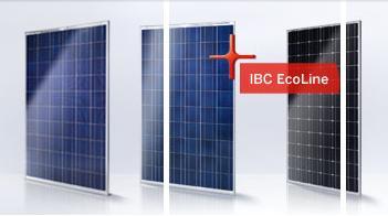 Ibc solar module